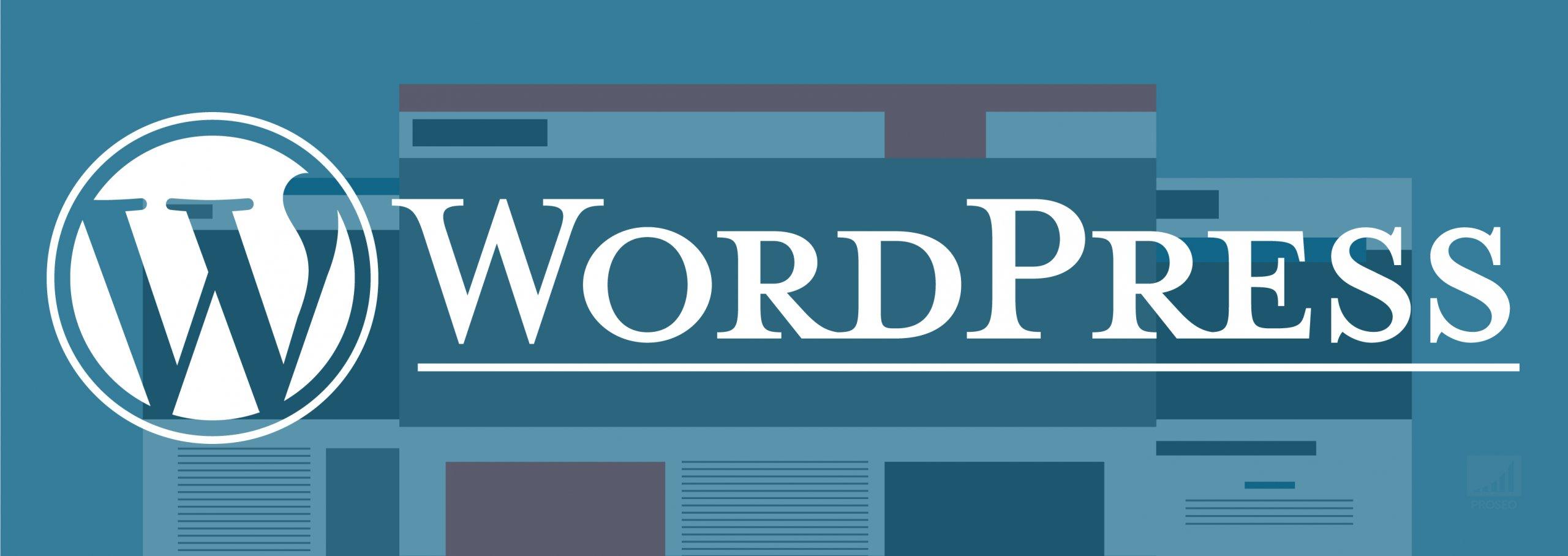 Hoe-kies-je-het-beste-Wordpress-thema-voor-SEO